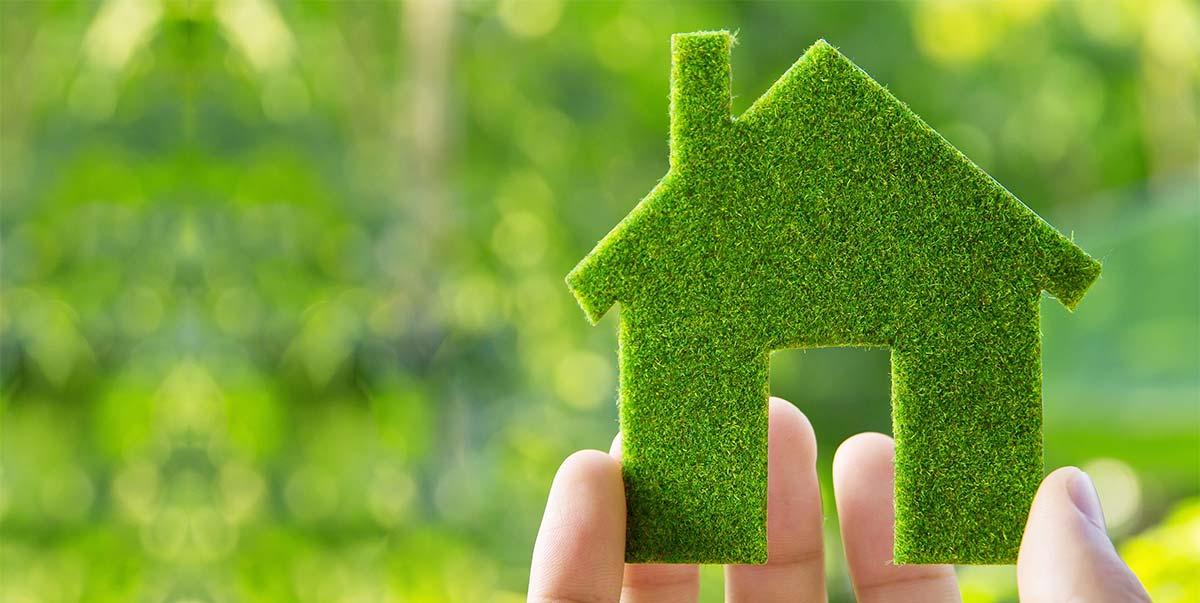 Le case in bioedilizia: tra rispetto dell'ambiente e comodità