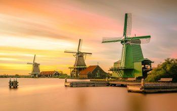 Come scegliere un esperto per la traduzione giurata olandese italiano