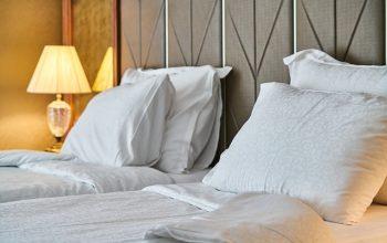 Cimici da letto: come riconoscerle ed eliminarle